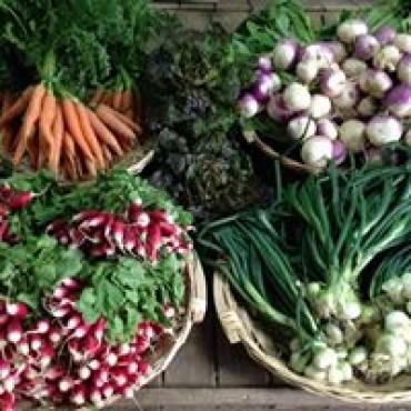 Les légumes nouveaux !